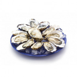 Plateau dégustation de 12 huîtres
