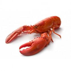 Demi-homard mayonnaise