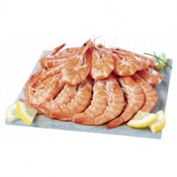 Crevettes roses - 12 pièces