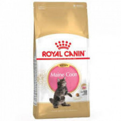 CROQUETTES MAINE COON ROYAL CANIN