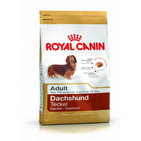 CROQUETTES TECKEL ADULTE ROYAL CANIN 1.5 KG