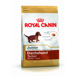 CROQUETTES TECKEL JUNIOR ROYAL CANIN 1.5 KG