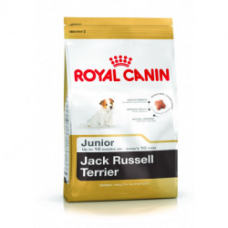 CROQUETTES JACK RUSSEL TERRIER JUNIOR ROYAL CANIN 1.5 KG