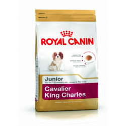 CROQUETTES CAVALIER KING CHARLES JUNIOR ROYALCANIN 1.50KG