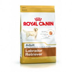 CROQUETTES LABRADOR RETRIEVER ADULTE ROYAL CANIN