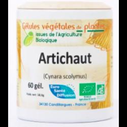 Artichaut- Gélules de plantes Bio - Phytofrance