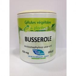 Busserole - Gélules de plantes Phytofrance