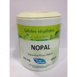 Nopal - Gélules de plantes Phytofrance