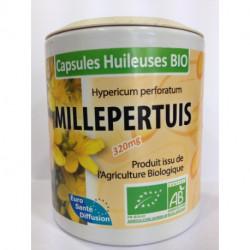 Millepertuis - Capsules huileuses Bio - Phytofrance