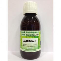 Astragale - Extrait Fluide Glycériné Miellé de plante Bio - Phytofrance
