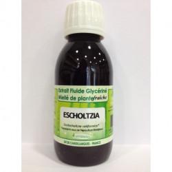 Escholtzia - Extrait Fluide Glycériné Miellé de plante Bio - Phytofrance