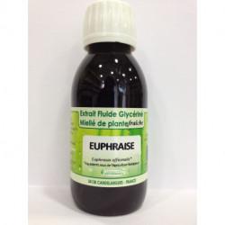 Euphraise - Extrait Fluide Glycériné Miellé de plante Bio - PhytoFrance