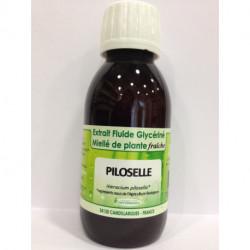 Piloselle - Extrait Fluide Glycériné Miellé de plante Bio - Phytofrance