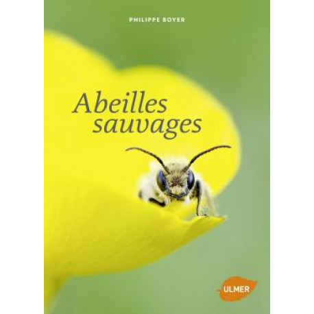 Abeilles sauvage, éditions Ulmer