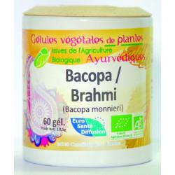 Bacopa Brahmi - Gélules de plantes Bio Phytofrance