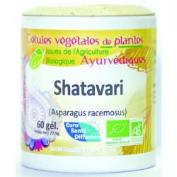 Shatavari - Gélules de plantes Bio Phytofrance