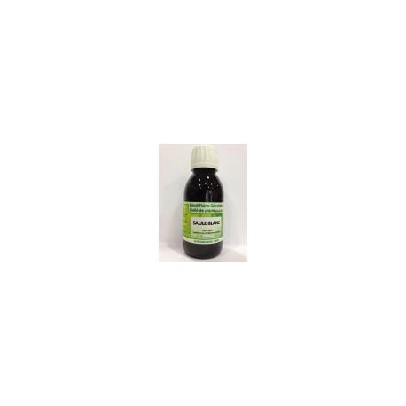 Saule blanc - Extrait Fluide Glycériné Miellé de plante Bio Phytofrance