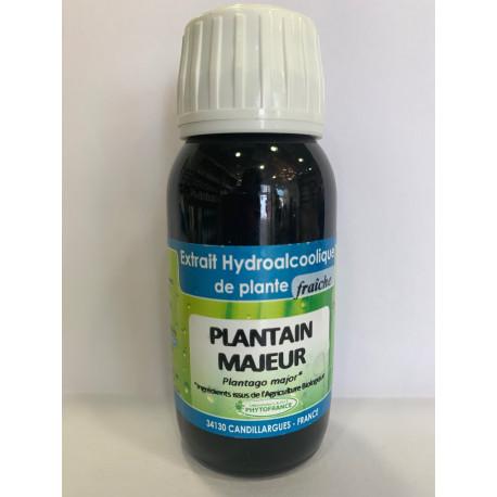 Plantain majeur - Extrait Hydroalcoolique de plante fraîche Bio - Phytofrance