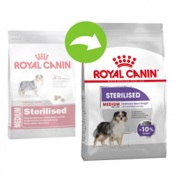 CROQUETTES CHIEN MEDIUM STERILISED ROYAL CANIN